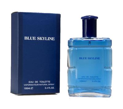 parfums hommes 100 ml